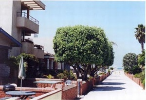 Hollywood, California Beach Rentals