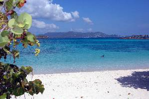St Thomas, Virgin Islands Beach Rentals