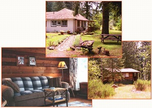 Washington Volcano Country Cabin Rentals