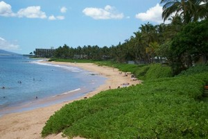Hawaii Pet Friendly Rentals