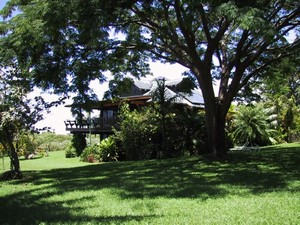 Maui, Hawaii – The Ultimate Island Getaway for Families