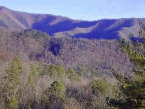 Seven Devils, North Carolina Vacation Rentals