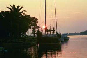 Santa Rosa Beach, Florida Pet Friendly Rentals