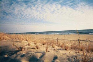 North East, Maryland Beach Rentals