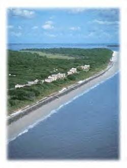 Tybee Island, Georgia Beach Rentals