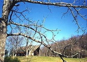 Cherokee, North Carolina Cabin Rentals