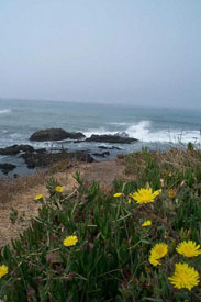 California Central Coast – Family Fun without Hassle