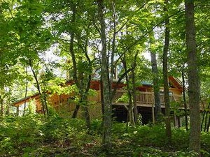 Banner Elk, North Carolina Vacation Rentals