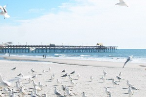 North Myrtle Beach - Family Fun on the Atlantic