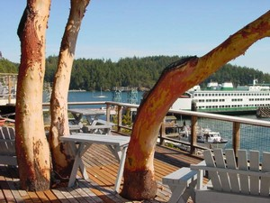 Whidbey Island, Washington Golf Vacation Rentals