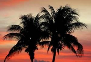 Waikoloa Beach Resort, Hawaii Beach Rentals