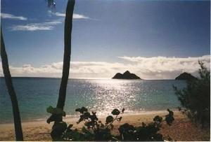 Sunset Beach, Hawaii Beach Rentals