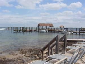 Florida Keys Pet Friendly Rentals