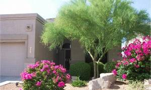 Scottsdale, Arizona - A Family Oasis in the Desert