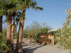 California Deserts Pet Friendly Rentals