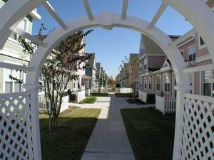 Disney, Florida Beach Rentals