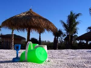 Eustis, Florida Beach Rentals