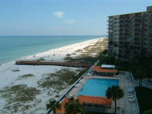 Tampa, Florida Pet Friendly Rentals
