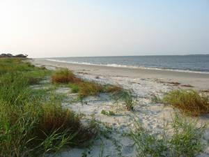 Hilton Head Island, South Carolina Golf Vacation Rentals