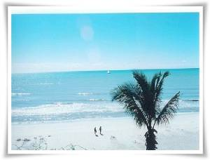 Florida South Gulf Coast Ski Vacations