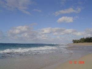 Punaluu, Hawaii Vacation Rentals