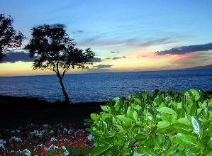 Hilo, Hawaii Golf Vacation Rentals