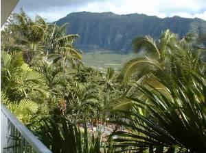 Haleiwa, Hawaii Vacation Rentals