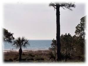 Harbor Island, South Carolina Vacation Rentals
