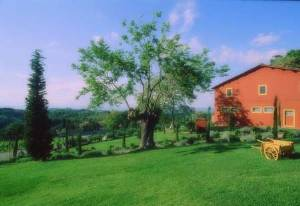 Valle San Giovanni, Italy Vacation Rentals