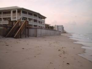 New Smyrna Beach, Florida Pet Friendly Rentals