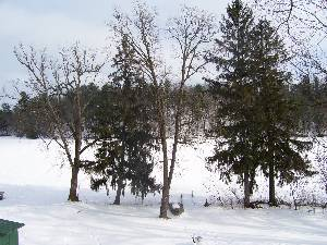 Wautoma, Wisconsin Vacation Rentals
