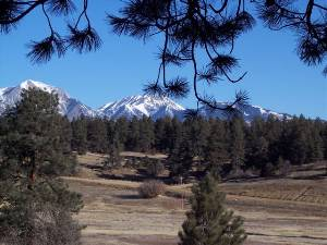 Silverton, Colorado Pet Friendly Rentals