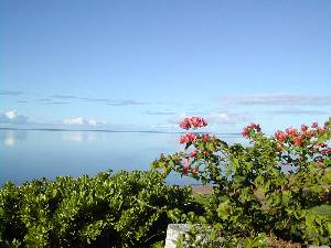 Ualapue, Hawaii Vacation Rentals