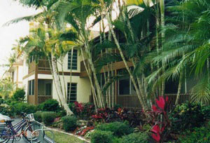 Siesta Key, Florida Pet Friendly Rentals
